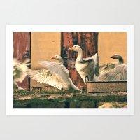 Rural Fragments Art Print