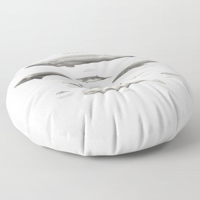 Cetacea Floor Pillow