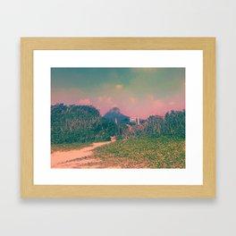 Coral Landscape Framed Art Print