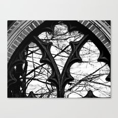 Give Me Black & White! Canvas Print