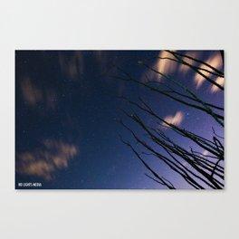 Ocotillo sight  Canvas Print