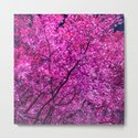 violet tree IV by blackpool