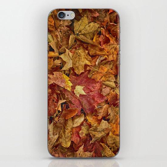 Falls textures iPhone & iPod Skin