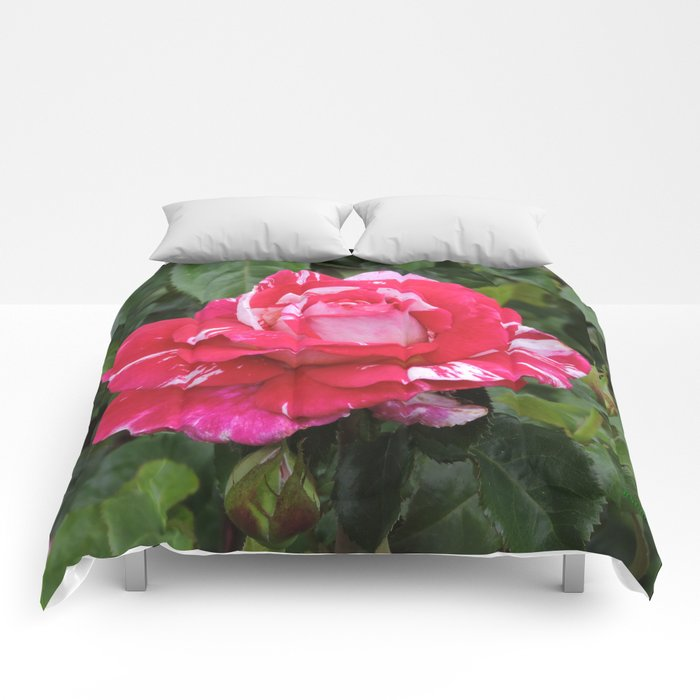 "A Rose Named ""Neil Diamond"" Comforters"