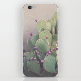 Still Life in Marfa iPhone Skin