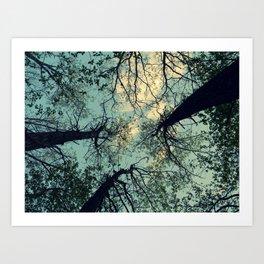look up. Art Print
