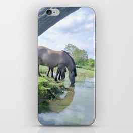 Drinking horses iPhone Skin
