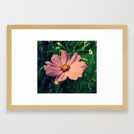 Smiling Flowers Framed Art Print