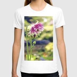 Aquilegia T-shirt
