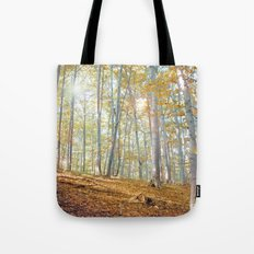 Lights of Fairies Tote Bag