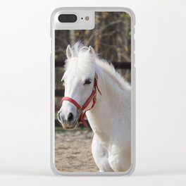 Pretty Penny Clear iPhone Case