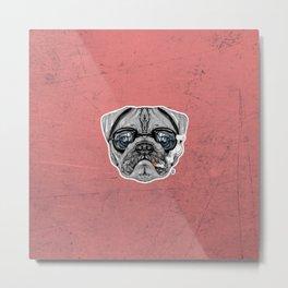 Intelectual Pug Metal Print