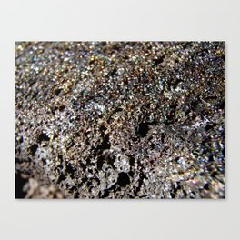 Lava Rock Canvas Print