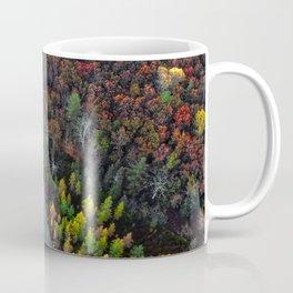 Dry Autumn Forest from Bird's eyes Coffee Mug