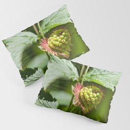 Young Salmonberry Photography Print Pillow Sham