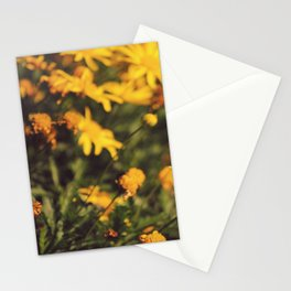 Sigue el camino de margaritas amarillas Stationery Cards
