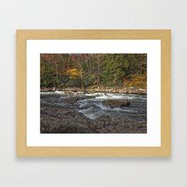 Audra 3 Framed Art Print