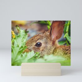 Munchy Bunny Photograph Mini Art Print