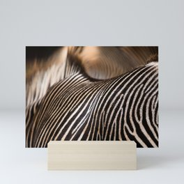 Zebra stripes Mini Art Print
