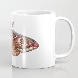 Small Emperor Moth (Saturnia pavonia) Coffee Mug