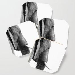 Black and white elephant portrait Coaster