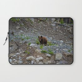 Black bear cub in Jasper National Park   Alberta Laptop Sleeve