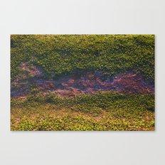 Merriweather Canvas Print