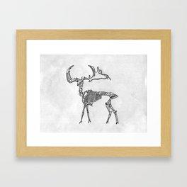 Boney bonny deer Framed Art Print