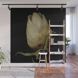 Piper - Dried Rose Scanography Portrait Wall Mural