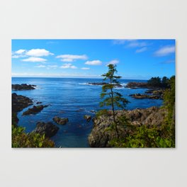 Wild Pacific Trail, Ucluelet BC Canvas Print