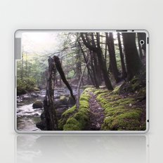 Well-Traveled Path Laptop & iPad Skin