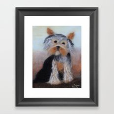 Yorkshire Terrier Framed Art Print