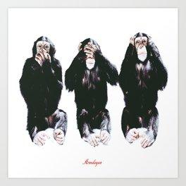 The three wise monkeys Art Print