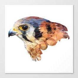 Falcon head Canvas Print