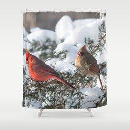 Sunny Winter Cardinals in the Adirondacks Shower Curtain