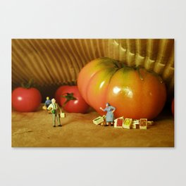 Shopping in Tomatoland. Canvas Print