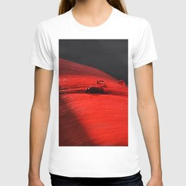 A drop of blood on a red leaf T-shirt