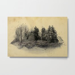 old landscape Metal Print