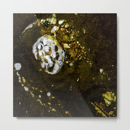 Bubbles in Los Angeles Metal Print