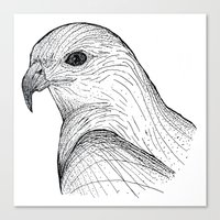falcon Canvas Prints featuring Falcon by OLIVIA WILLIS