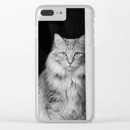 Doorway Cat 2 Clear iPhone Case