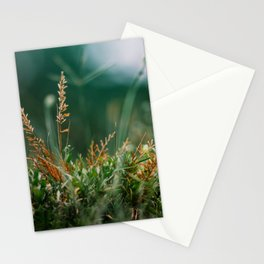 Leaf branch nature closeup Stationery Cards