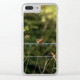 Wren Songbird Bird on a Wire (Troglodytes) Clear iPhone Case