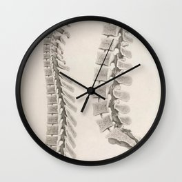 Anatomical Spine Wall Clock