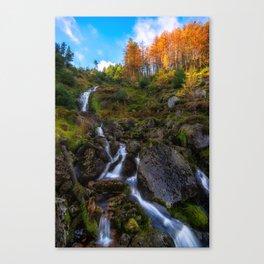 Waterfall in Ireland (RR 253) Canvas Print
