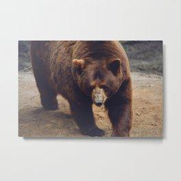 bear IV Metal Print