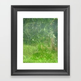 Reflections and Underwater view Framed Art Print