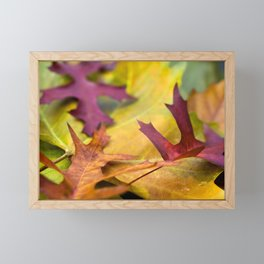 Autumn Leaves Framed Mini Art Print