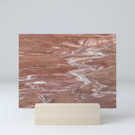 Texture Landscape at Petrified Forest National Park Mini Art Print
