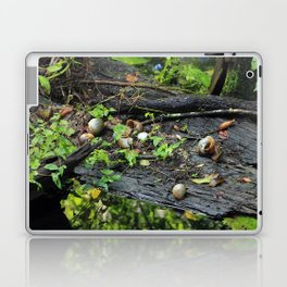 Snail Shell Aftermath Laptop & iPad Skin